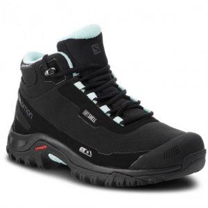 Ботинки Salomon Shelter Cs Wp W s404731
