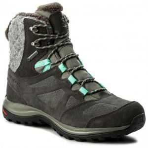 Ботинки Salomon Ellipse Winter GTX 398550