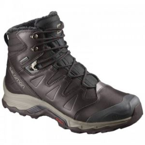 Ботинки Salomon Quest Winter GTX 399723